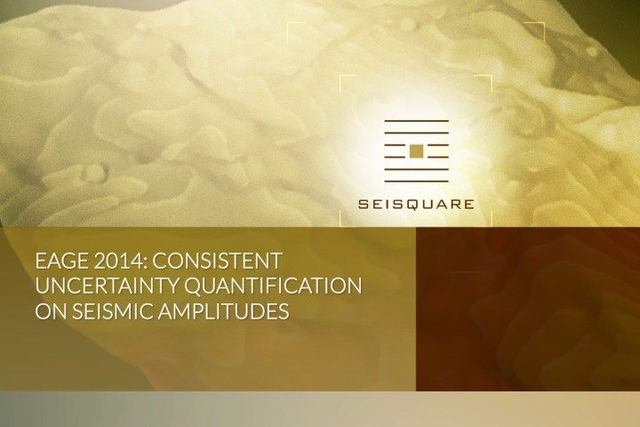 Eage 2014: Consistent Uncertainty Quantification On Seismic Amplitudes