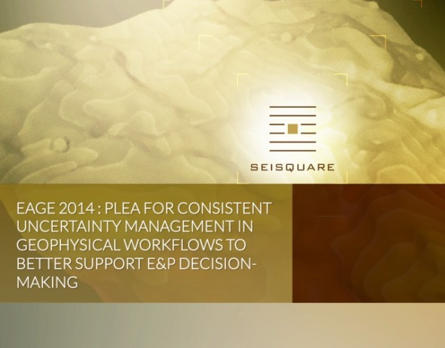 Eage 2014 : Plea For Consistent Uncertainty Management In Geophysical Workflows To Better Support E&P Decision-Making